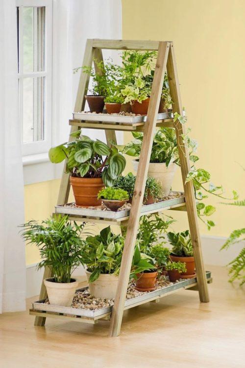 indoor herb garden ideas using a step ladder as a display
