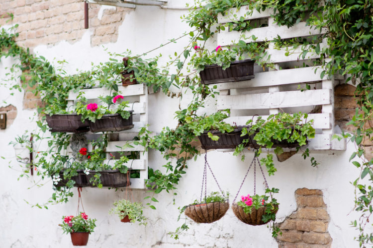 DIY garden pallet ideas using salvaged pallets on the wall as plant racks