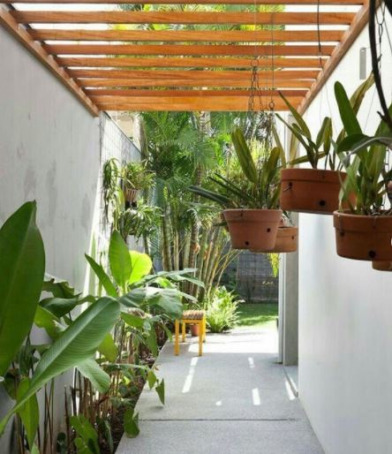 an airy side garden with plants hanging from a pergola