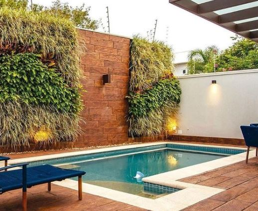 Gravity-Defying Green Wall Ideas 1