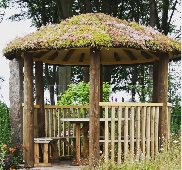 an open-sided gazebo with plants growing on the roof
