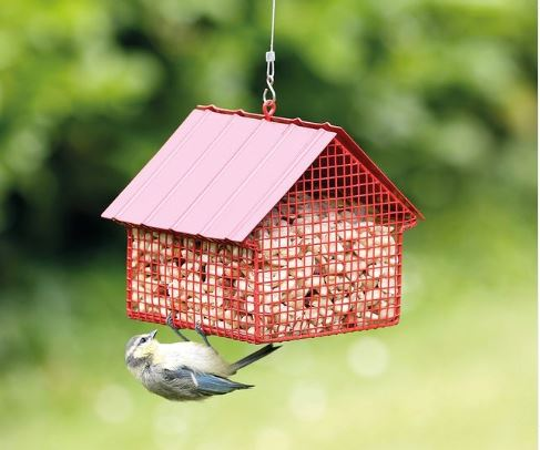 a small bird pecks at a metal bird-feeder