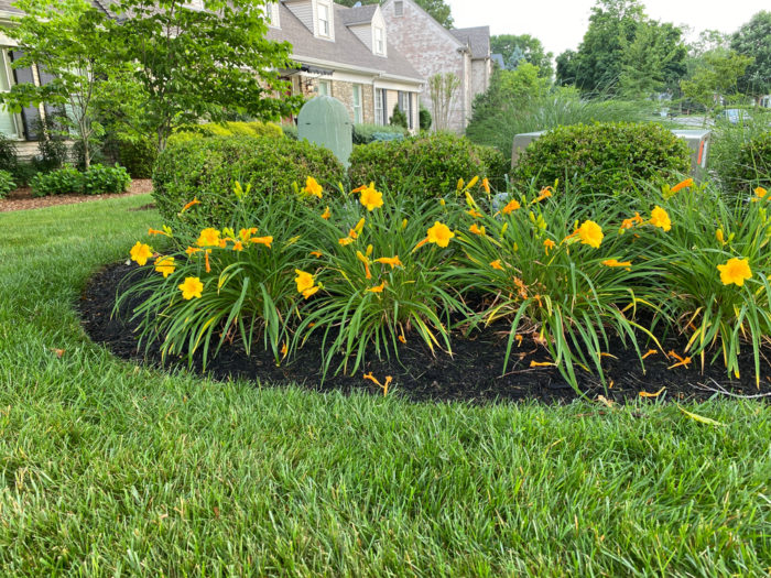 garden tips for selling your home include putting mulch on your flower beds