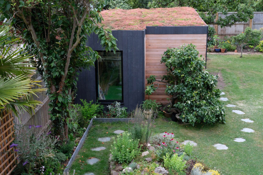 stepping stones lead to a shed with a sedum roof