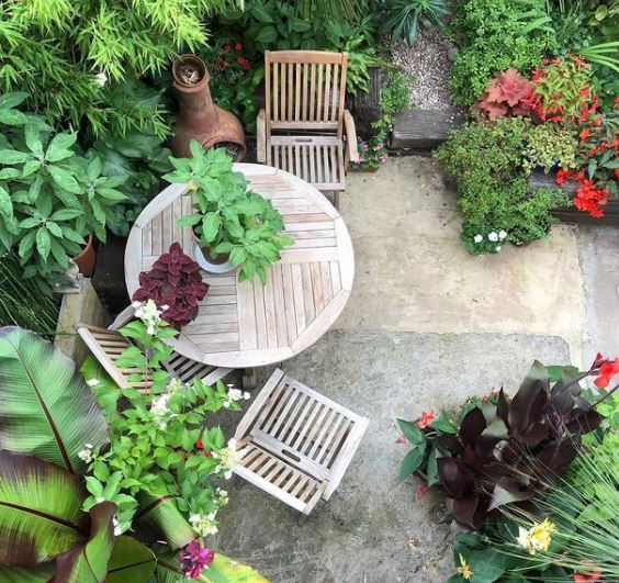 a wooden patio set surrounded by lots of lush green leafy plants