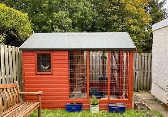 an orange shed that has been modified into a rabbit or guinea pig house