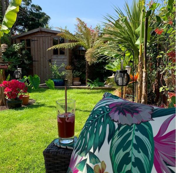 a garden sofa with brightly-patterned cushions, looking over a sunny garden with exotic plants