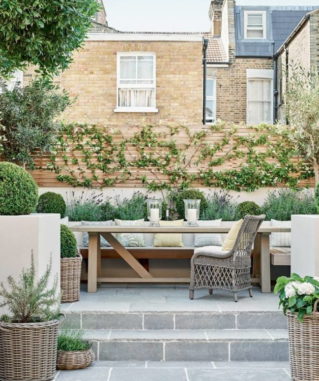behind a modern patio seating area, a leafy vine climbs a slatted fence and lavender plants grow below