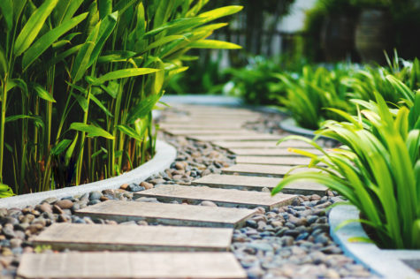 a garden path, made from stepping stones in gravel, weaves between tropical flower beds