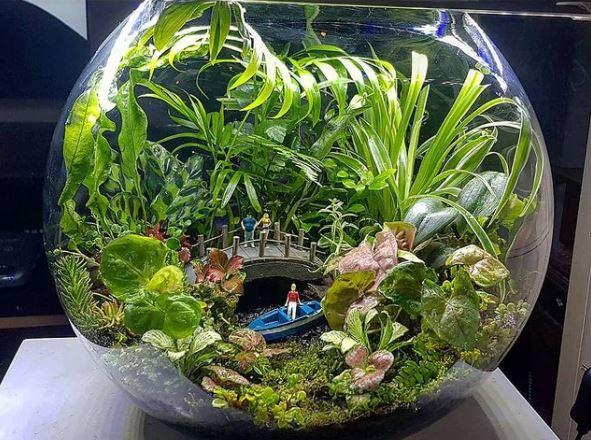 a terrarium with miniature sculptures inside, creating a fairy garden jungle