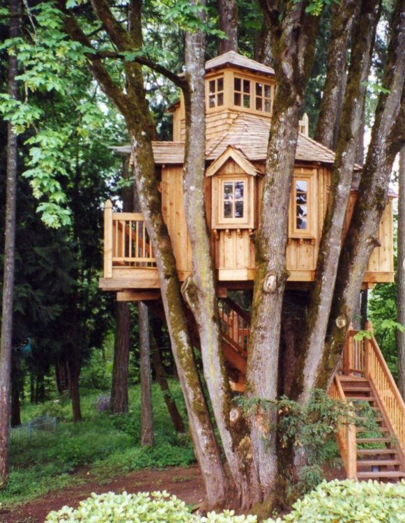 an elaborate treehouse with steps, windows, a deck and a turret