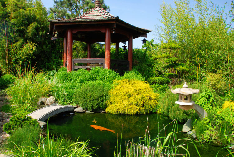 garden gazebo ideas from Japan, with a pagoda style shelter over a koi pond