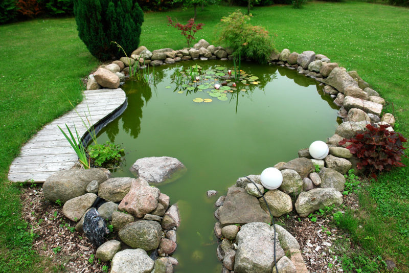 an ornamental pond surrounded by lots of rocks