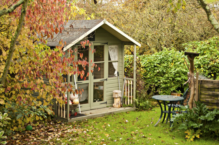 a summerhouse style shed surrounded by autumnal foliage