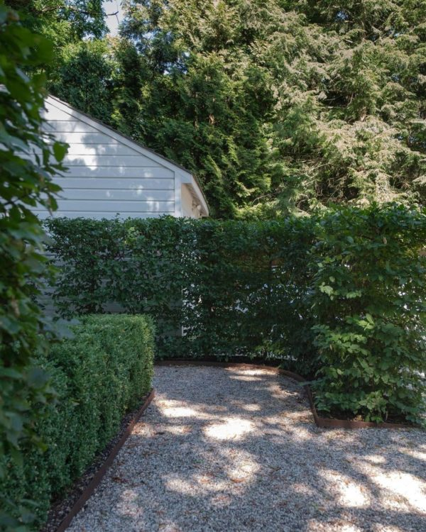 bay laurel hedges creating secluded garden spaces