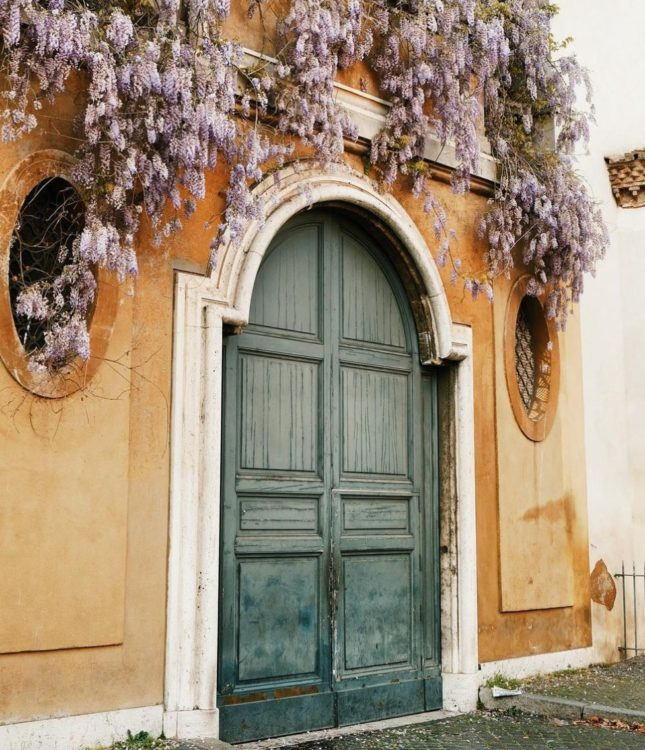 a dark teal door in a muted orange wall is the background for a beautiful overhanging wisteria plant