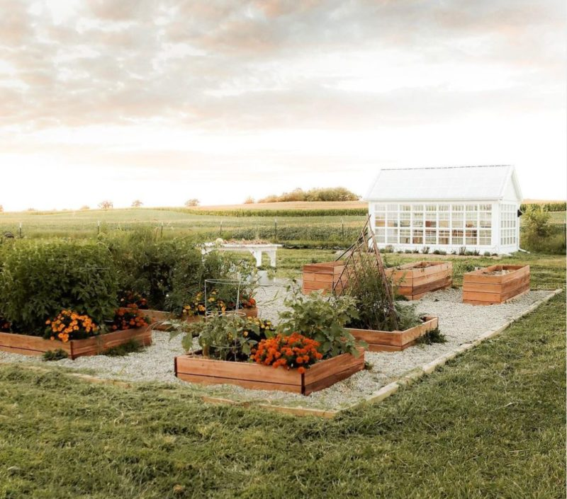 a beautiful greenhouse surrounded by tidy plant beds filled with vegetables