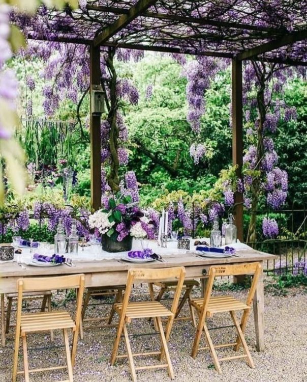 a dining table and chairs beneath a wisteria-covered pergola, with wisteria flowers as decorations