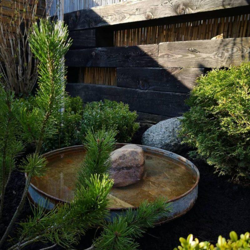 a stylish bird bath surrounded by foliage