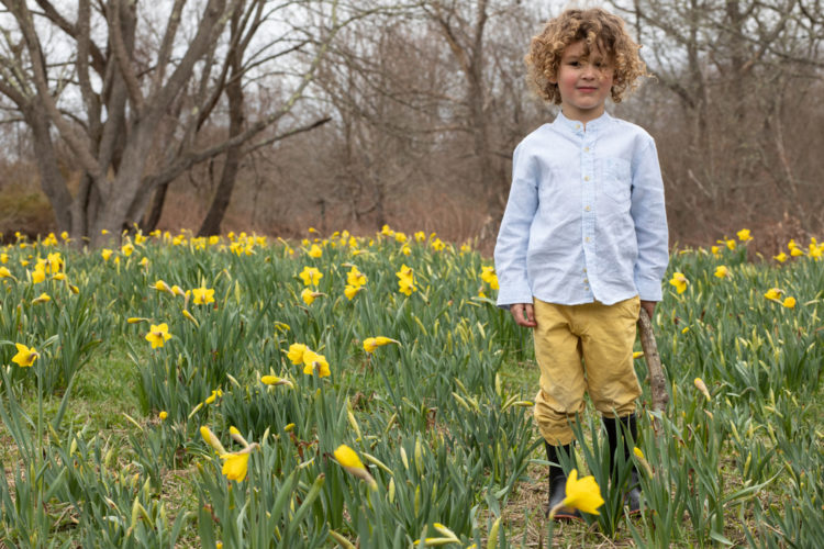 a young boy wearing wellies, standing in a patch of daffodils