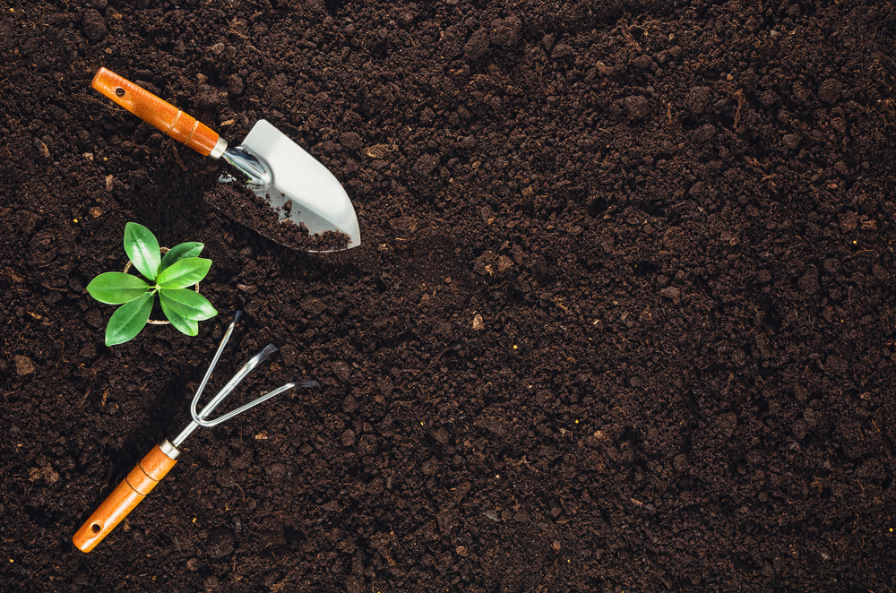 a gardening fork and trowel on  a background of dark soil
