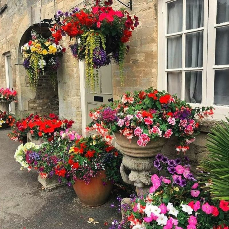 a motley collection of weathered pots and planters, filled with abundant flowers of pink, red and purple