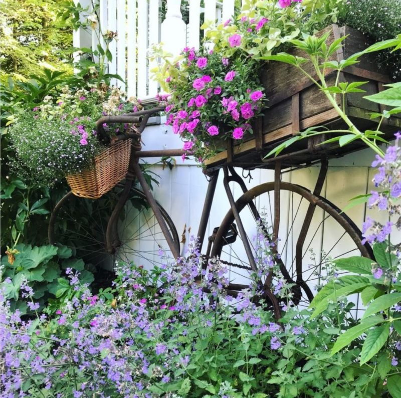 a rusty vintage bicycle with flowers growing in the front and rear baskets