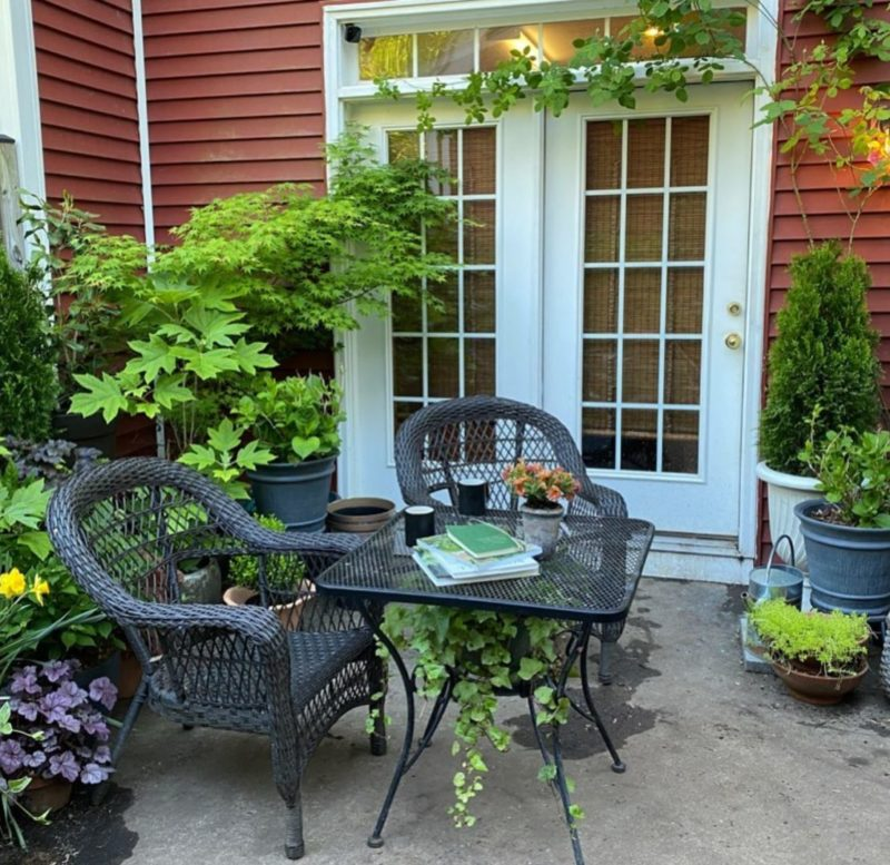 a small patio filled with lots of beautiful non-flowering plants in containers