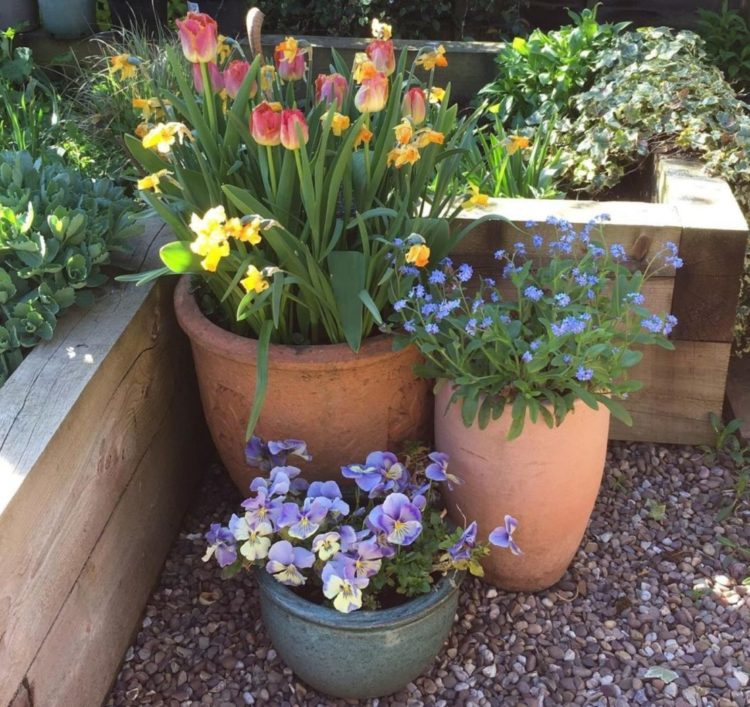container gardening ideas with planters of different heights with different flowers