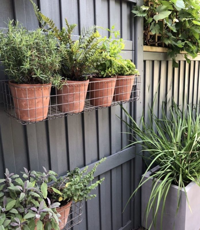a wire mesh basket attached to a fence, with four small terracotta pots in a row inside