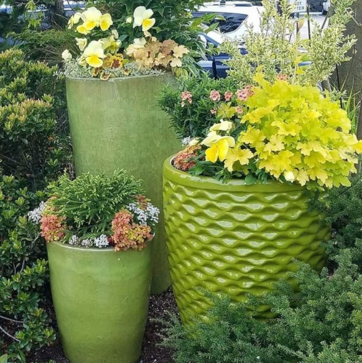 container gardening ideas using green pots with different textures