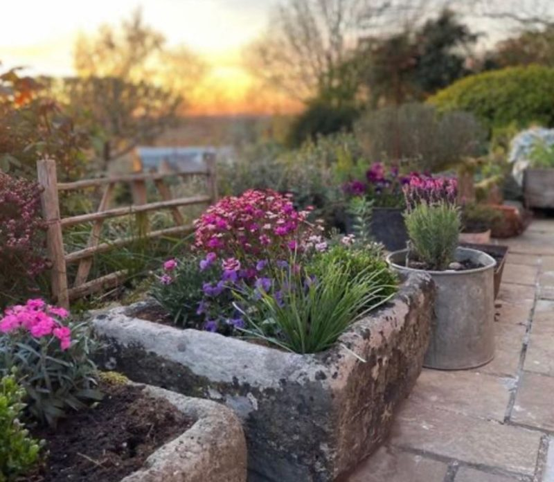 huge stone troughs are used as planters for bright pink flowers