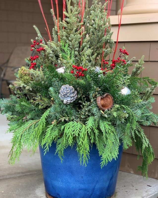 a festive looking container garden with red berries, pine cones and conifer fronds