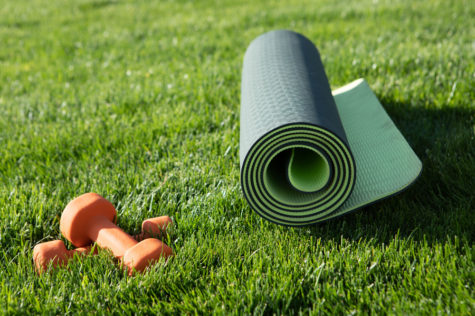 Keep Fit at Home: Garden Gym Ideas 1