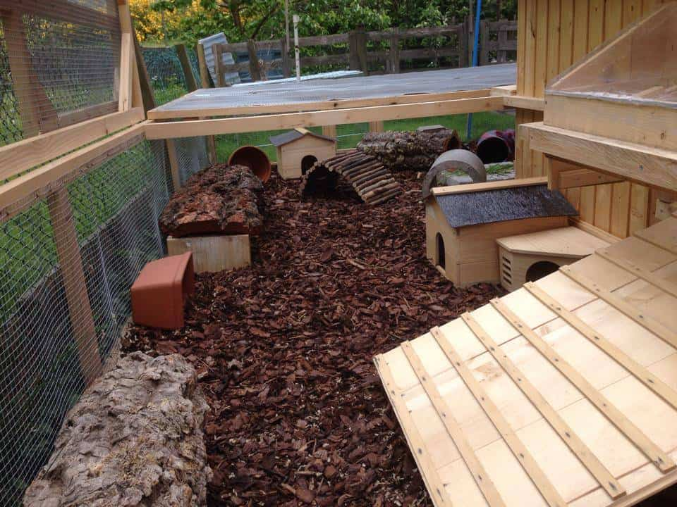 How Do I Stop Our Rabbits from Chewing on Garden Furniture? 1