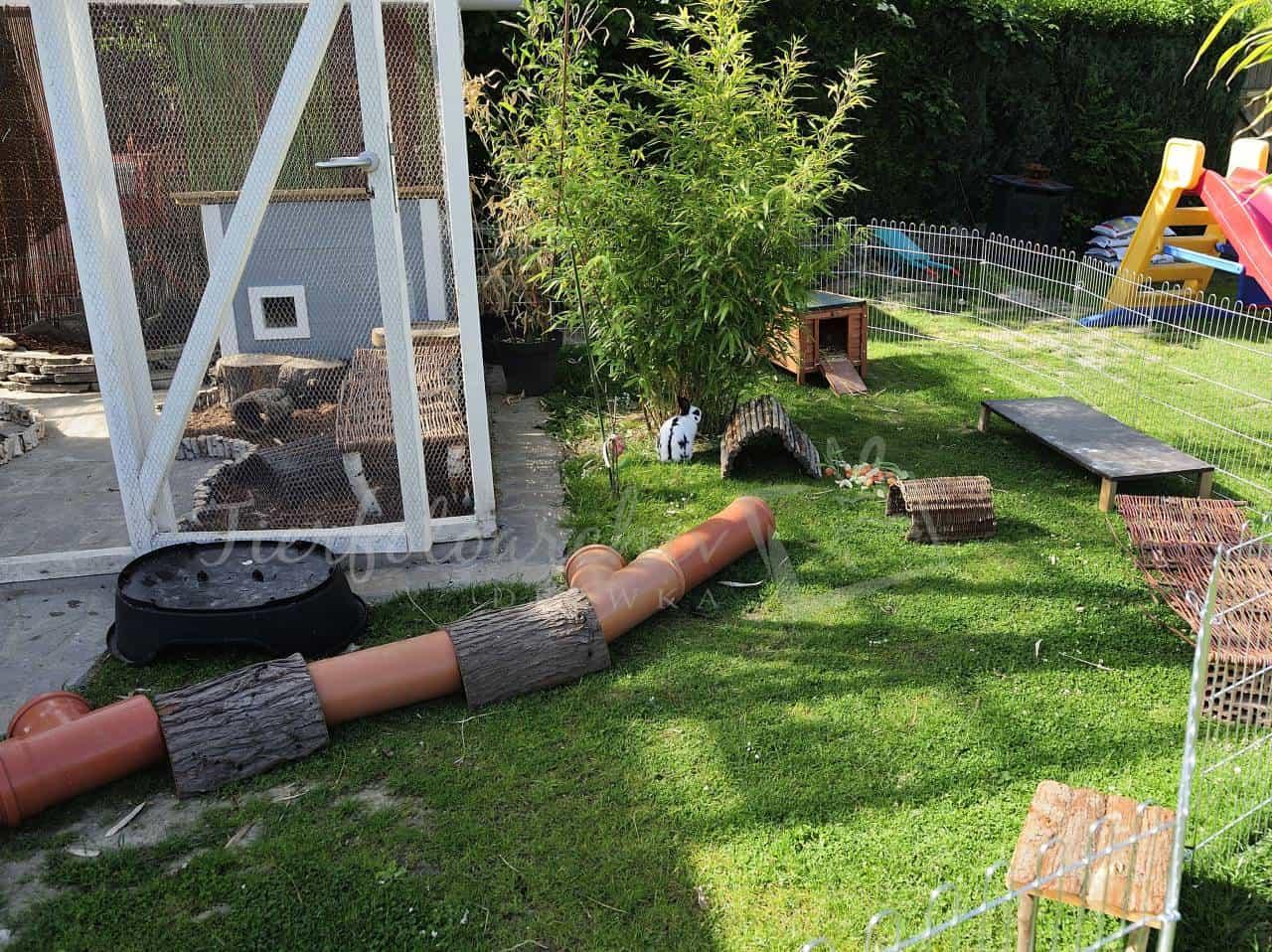 bunnie garden