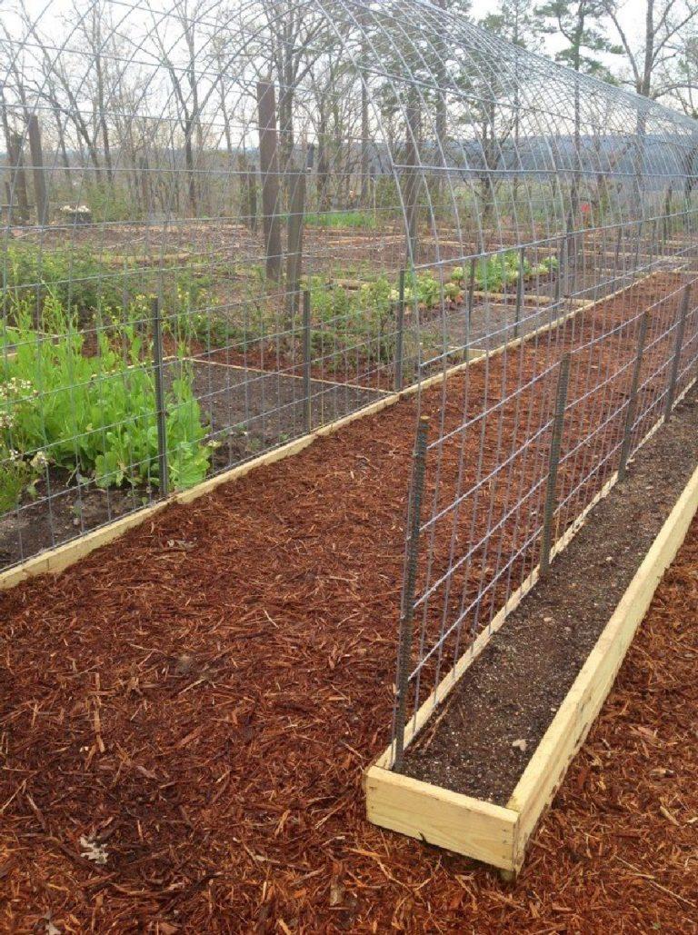 diy arched trellis-wire mesh