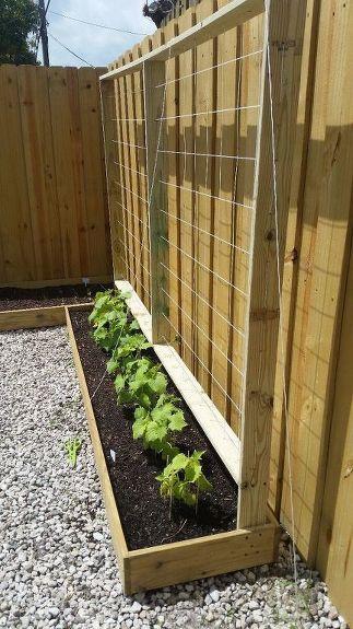 Planter box trellis