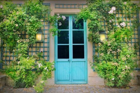 Old door outside with trellis on the sides