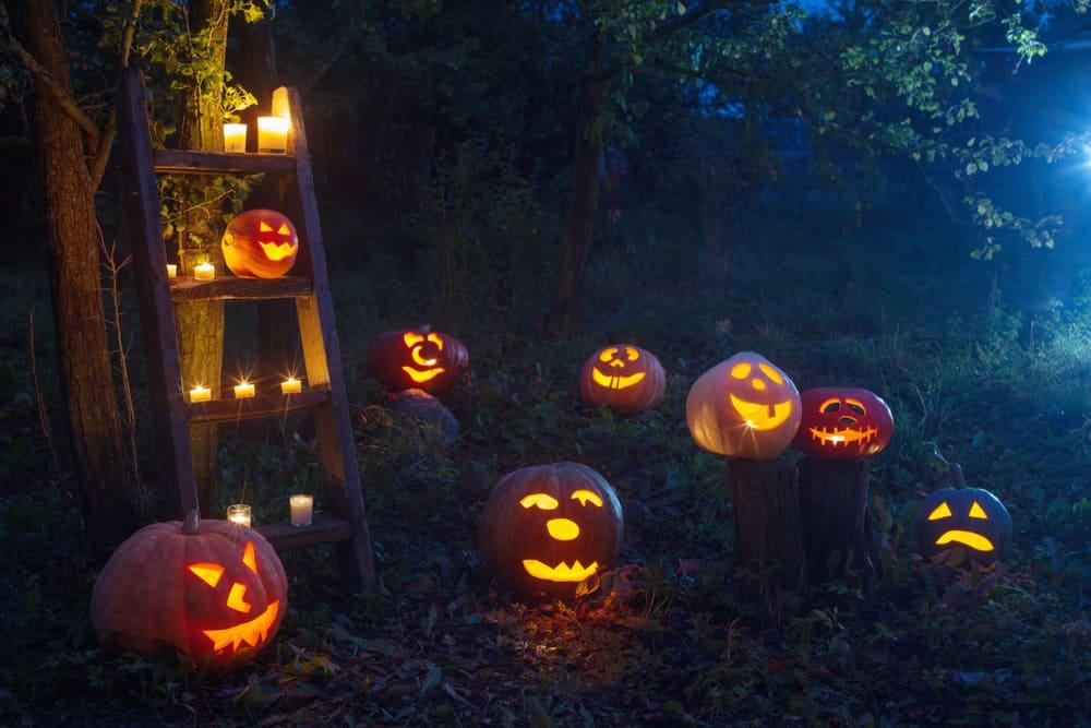 hallowin jack-o-lantern pumpkins outdoor