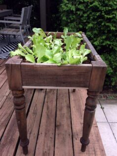 old table to raised bed garden