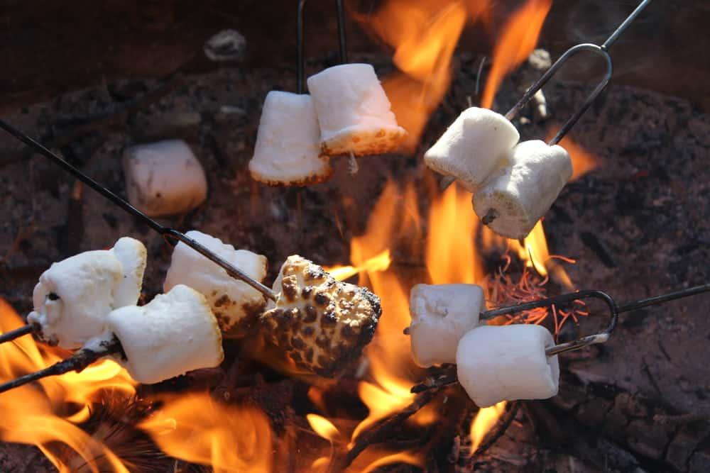 roasting marshmallows fire pit