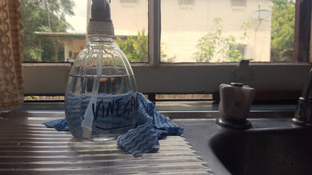 vinegar spray