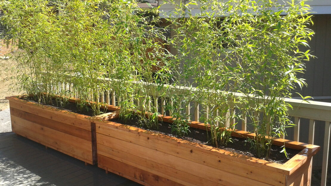 How to Build a Planter Box for Bamboo 4