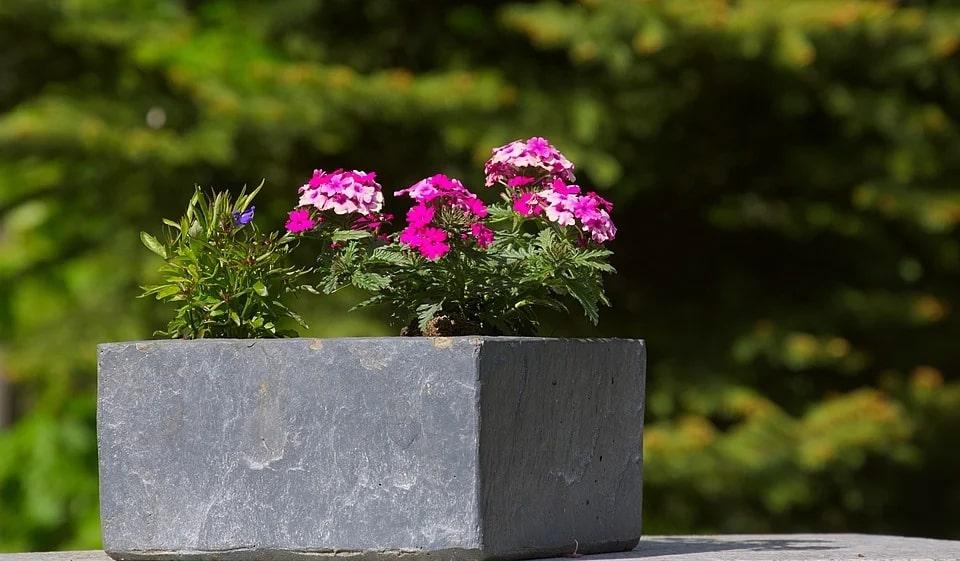 diy concrete planter box