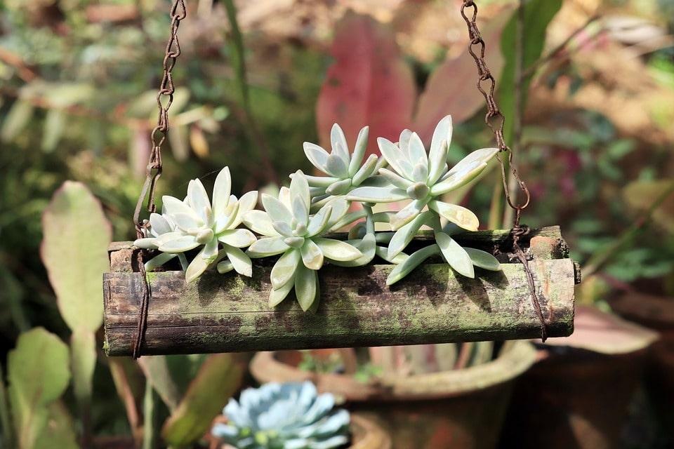 diy hanging planter box