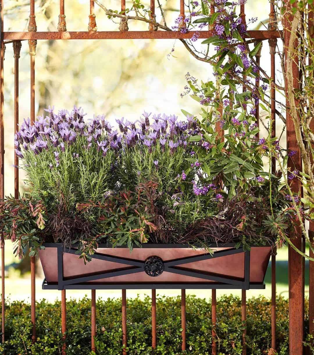 fragrant herb flower box