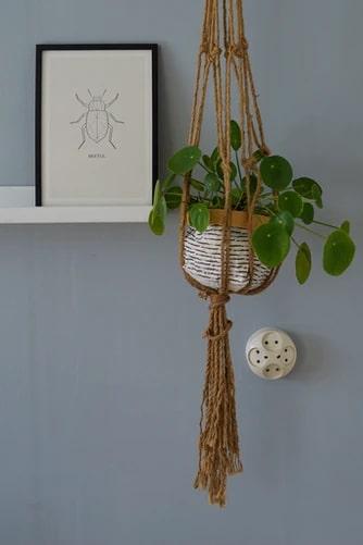 hanging basket planter box