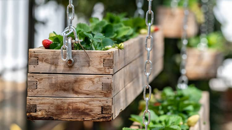 hanging planter box ideas