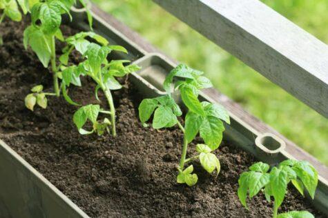 herb planter box ideas